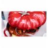 LOS GEMELOS STAUB 40511-774-0 Cocotte tomate STAUB cereza de hierro colado. Diametro: 25cm