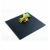 APS 995 Naturschiefer bandeja cuadrado pizarra natural 30x30 cm