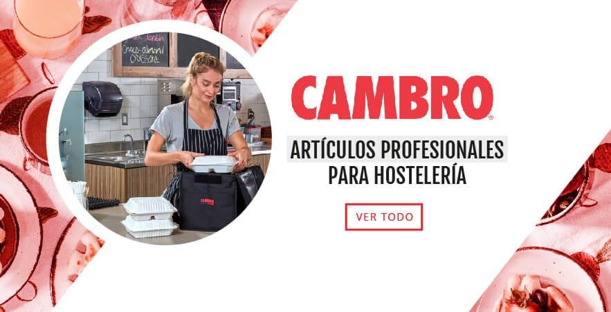 CAMBRO_Mesa-de-trabajo-1-copia-4